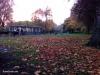 jardines-de-st-stephen-green-10