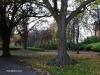 jardines-de-st-stephen-green-12