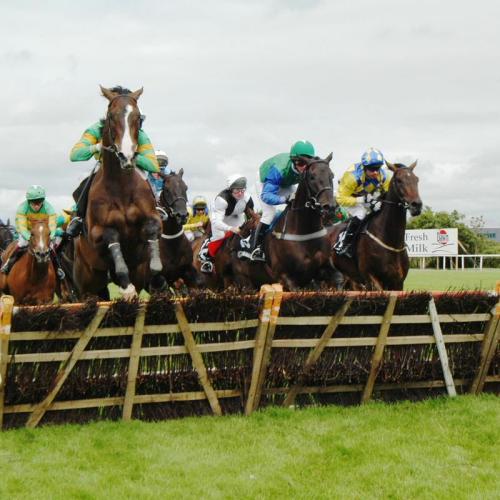 Las carreras de caballos, la atraccion de Galway