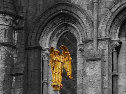 La Catedral de San Finbar en Cork