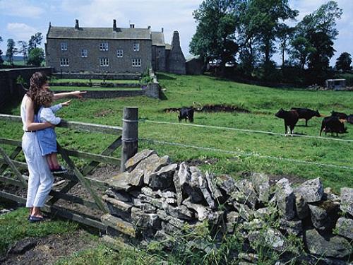 Finvoy Fun Farm, ocio para niños en Ballymoney
