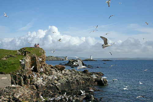 Isla Inishbofin