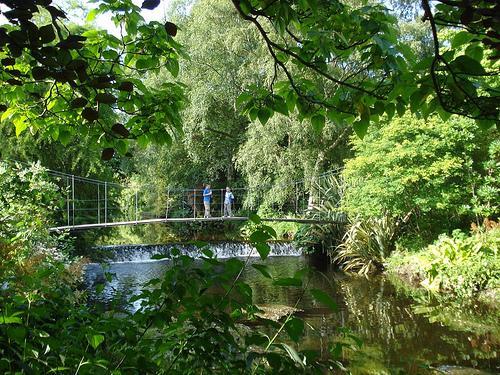 Jardines de Mount Usher en Ashford