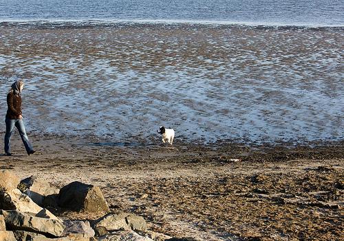 playa de sandymount